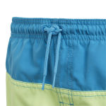 adidas Colourblock Swim Shorts JR
