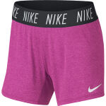 Nike Dry Trophy Training Short JR