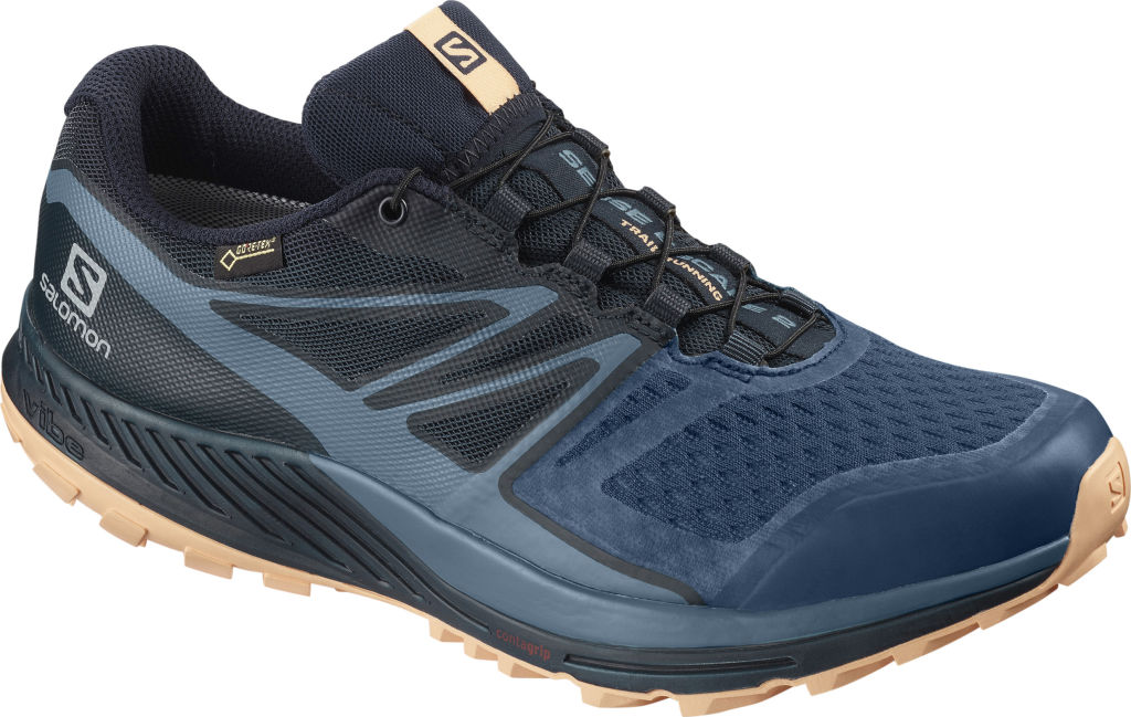 Salomon Sense Escape 2 GTX W