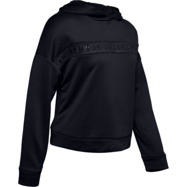 Under Armour Tech Terry Hoody W